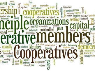kooperative